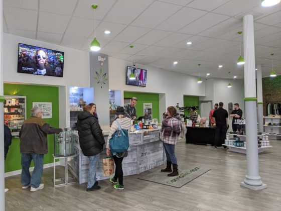 CannaBiz Depot - Store front counter with customers.