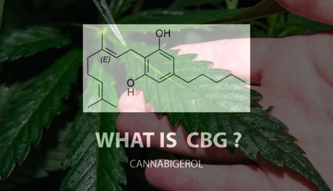 What is CBG chemical breakdown