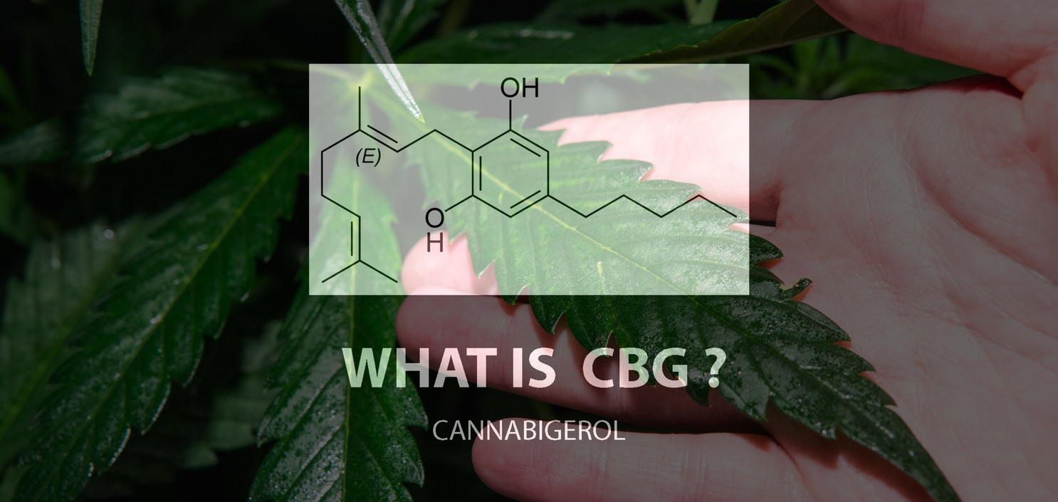What is CBG chemical breakdown