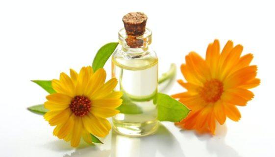 Hemp and CBD oil with sunflowers.